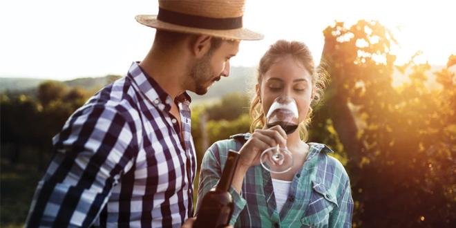 wine&senses